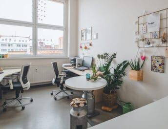 Záběr na pracovní místa u okna v jedné z kanceláří Riegrovy 51