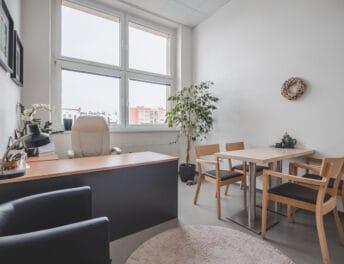 Kancelář s pracovním místem a posezením pro návštěvy v Riegrově 51