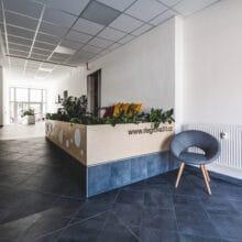 Vstupní chodba Riegrovy 51 s květinami a židlí